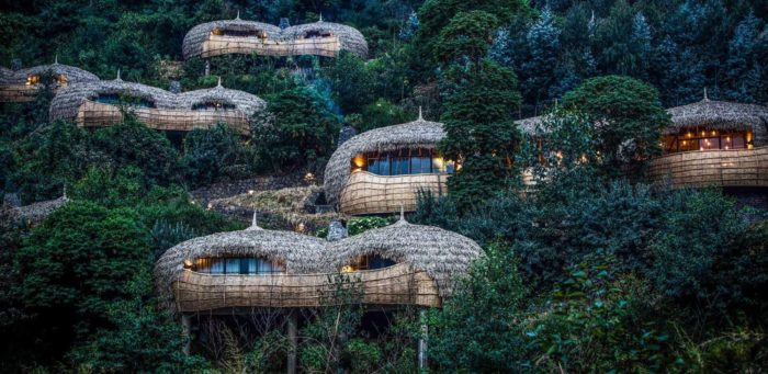 Bisate Lodge   Nicholas Plewman Architects